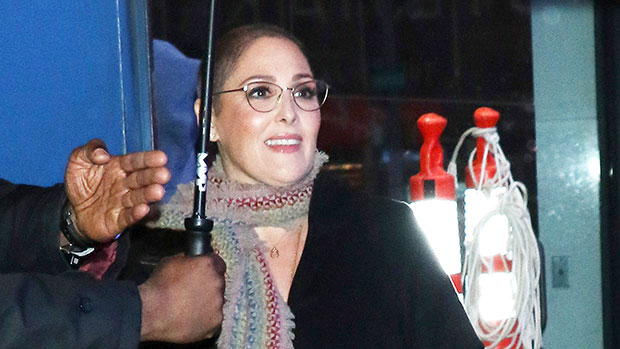 5 Things About Ricki Lake's Fiancé – Hollywood Life