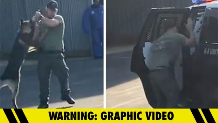 North Carolina Cop Under Fire for Choking, Hanging Police Dog by its Leash